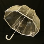 """Even the """"Alt Text"""" has to admit this is an umbrella not a seagull or steam engine for example."""