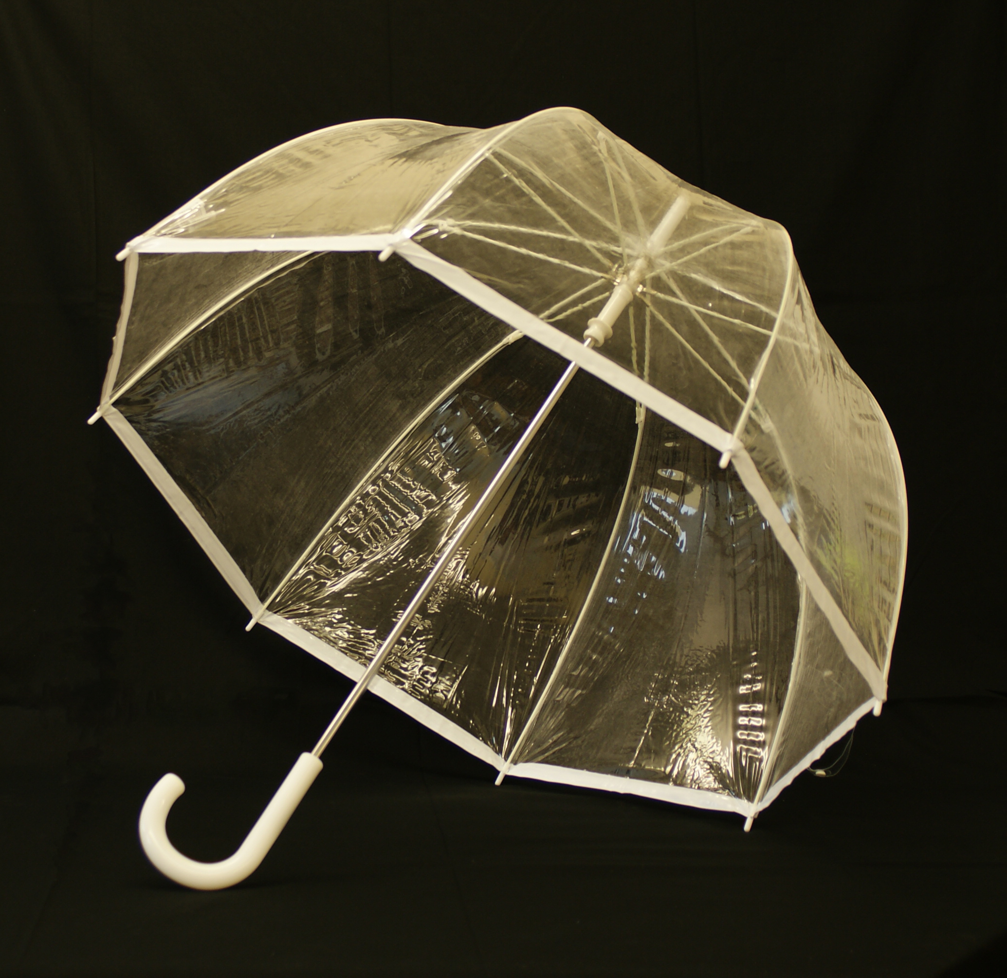 "Even the ""Alt Text"" has to admit this is an umbrella not a seagull or steam engine for example."