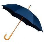 Warwick Dark Blue Windproof Walking Umbrella