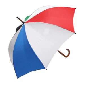 City Cub Custom Umbrella