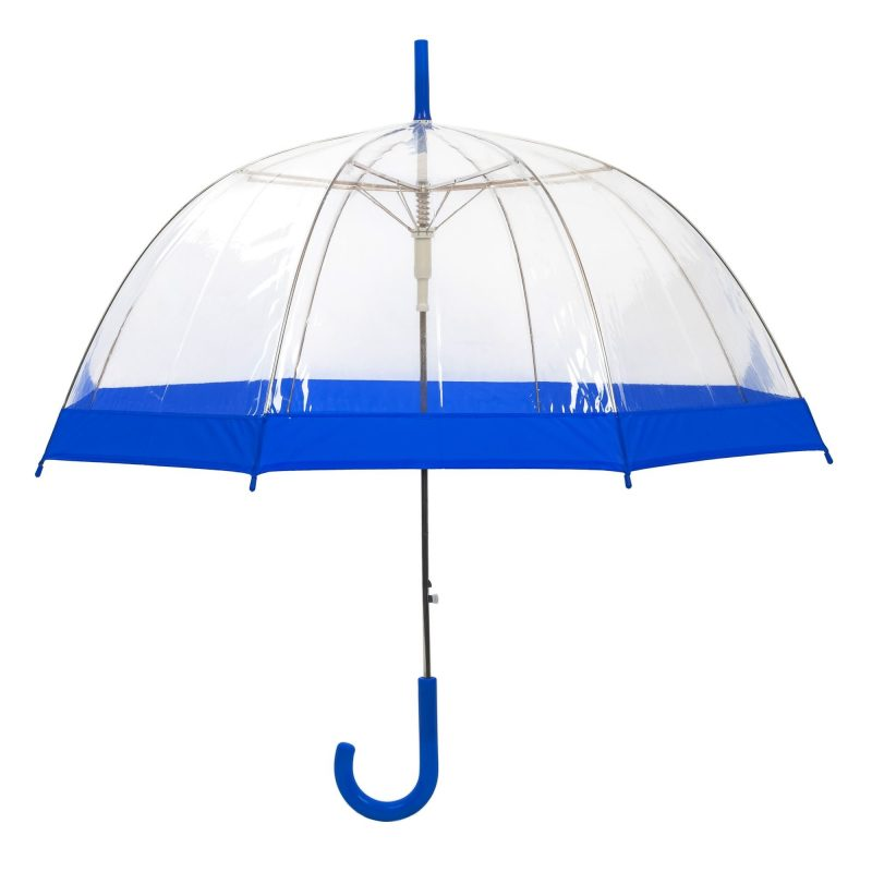 Clear Dome Umbrella Blue Trim upright