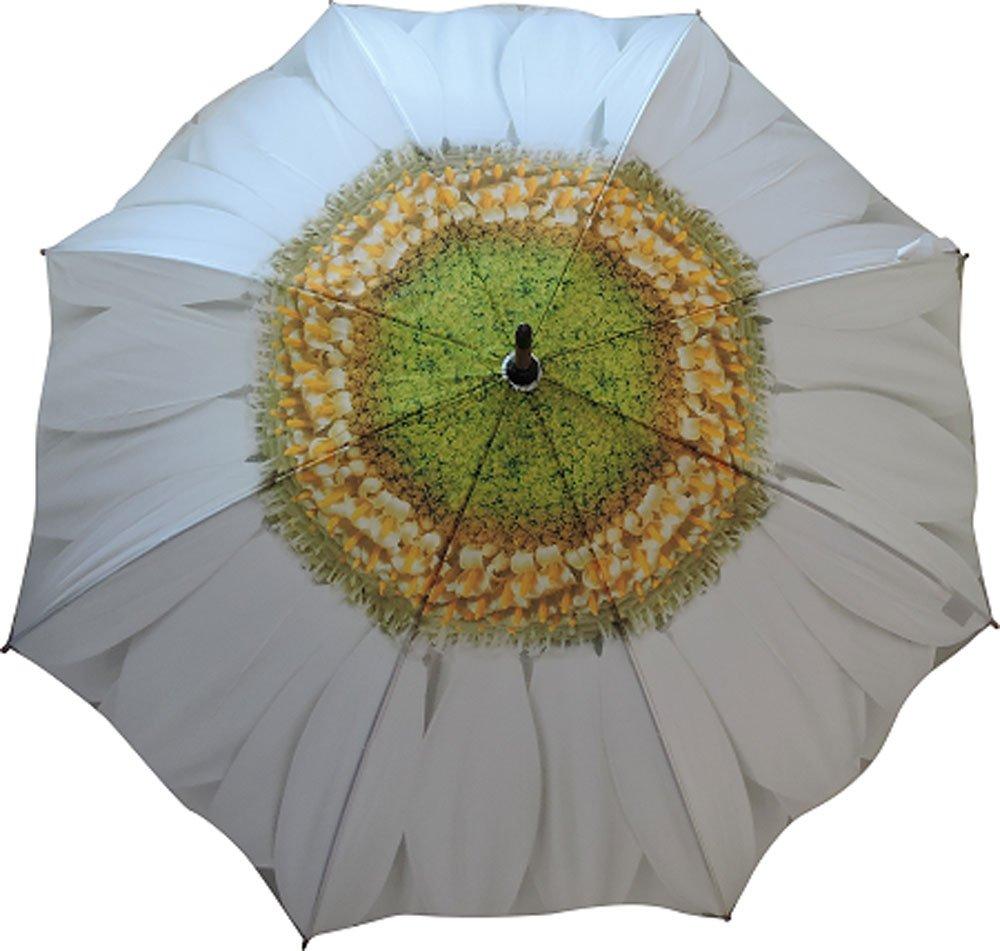 Flower Umbrella Daisy Print Full Length Umbrella Heaven