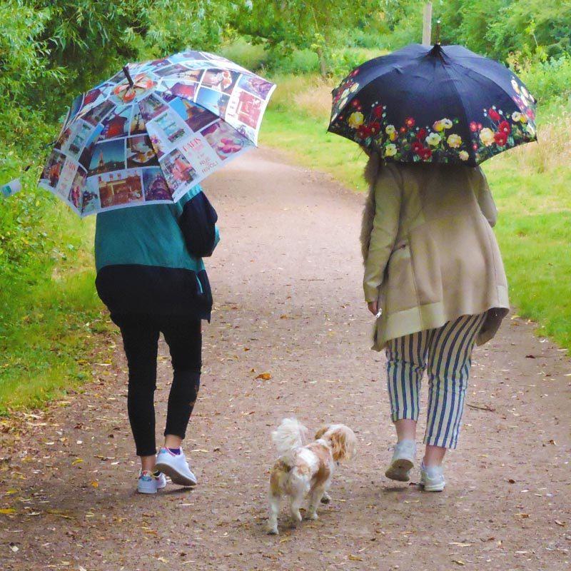 Cityscape Walking Umbrella in the park with Floral Pagoda umbrella