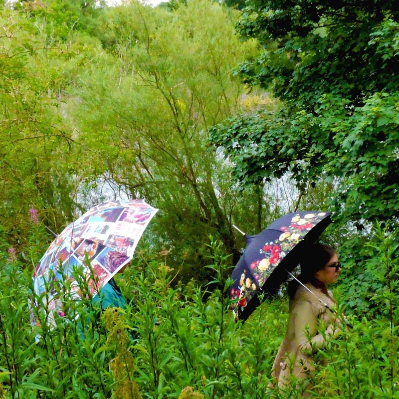 Cityscape Walking Umbrella and Floral Pagoda umbrella in the jungle