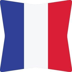 Flag Umbrella - France