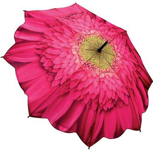Gerbera Flower Umbrella