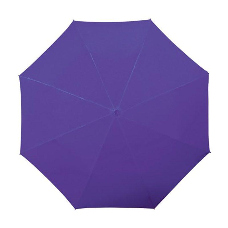 small purple umbrella