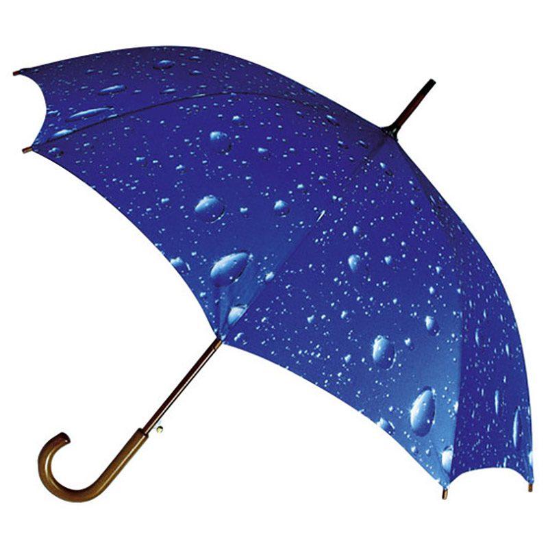 Wood Crook Handle Rain Art Umbrella - Rain Storm