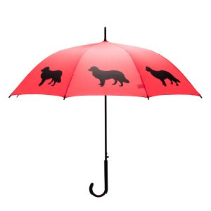 Border Collie Umbrella - Red & Black