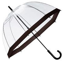 Clear Dome Umbrella Black Trim