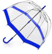 Clear Dome Umbrella Blue Trim