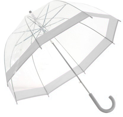 Clear Dome Umbrella Silver Trim