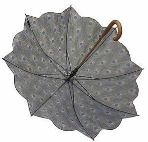peacock umbrella open inside