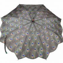 Peacock Print Umbrella