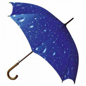 Wood Crook Handle Umbrella - Rain Storm