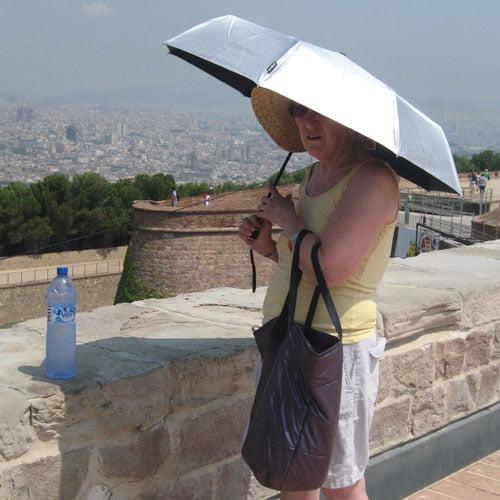silver UV umbrella modelled
