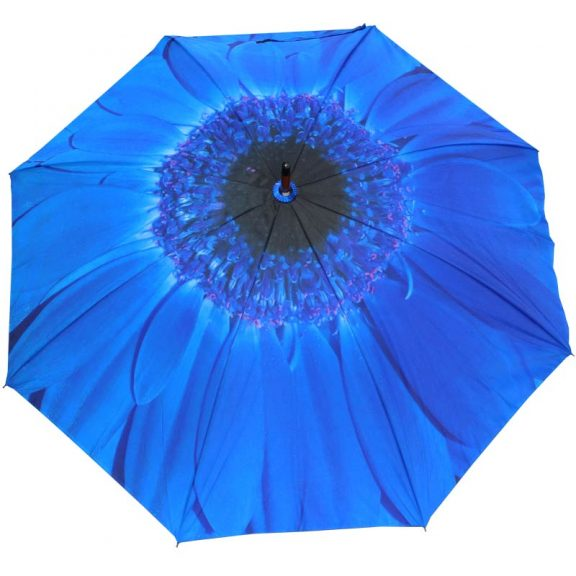 Blue Flower Umbrella