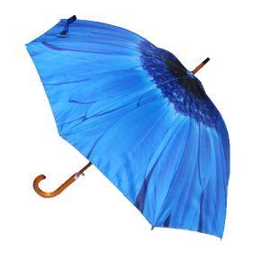 blue flower umbrella 3 blue flower umbrellas