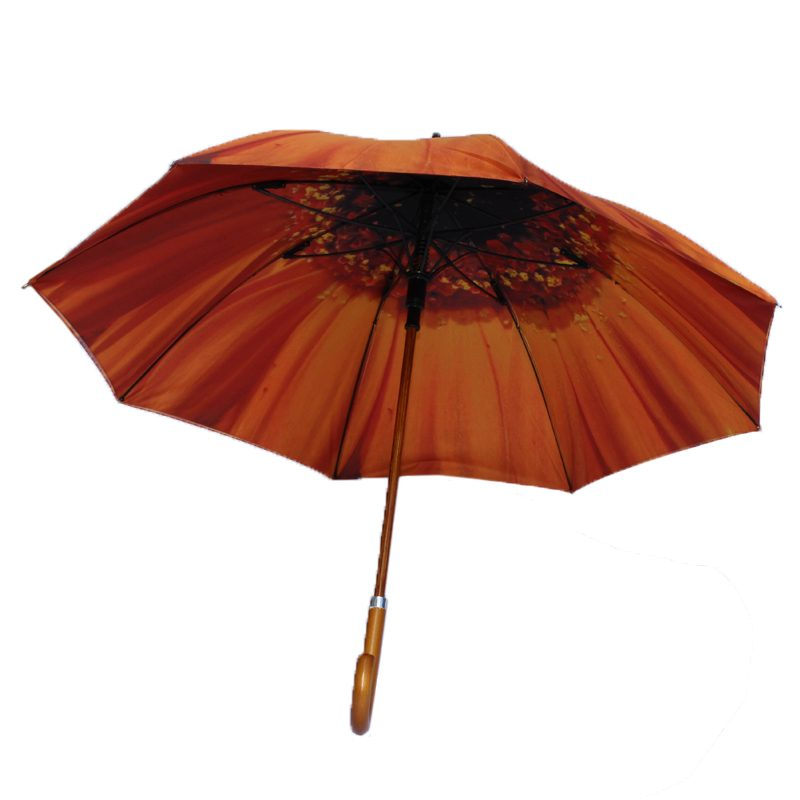orange flower umbrella 4