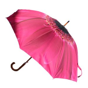 pink flower umbrella 2 pink flower umbrellas