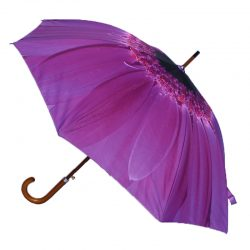Purple Umbrella / Flower Umbrella