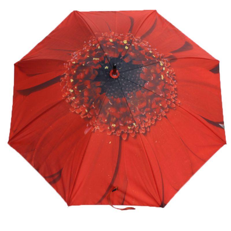 red flower umbrella 3