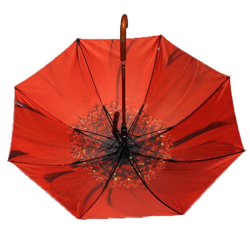 red flower umbrella 2