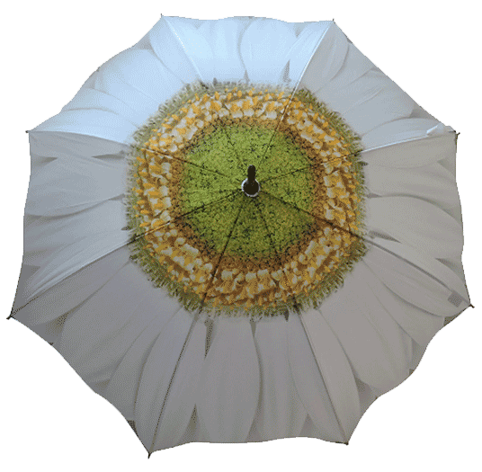 Daisy Flower Umbrella