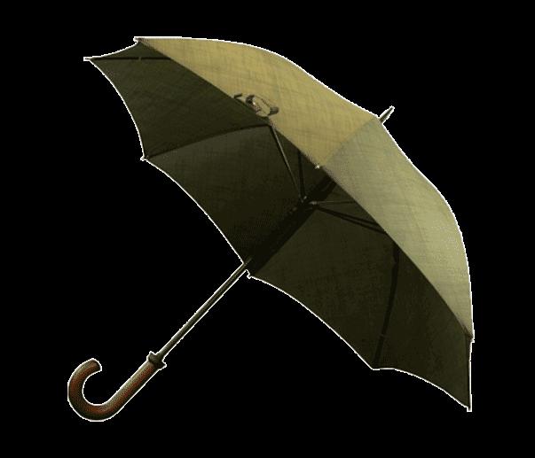 special offer umbrella