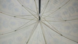 Indian Garden Parasol underside