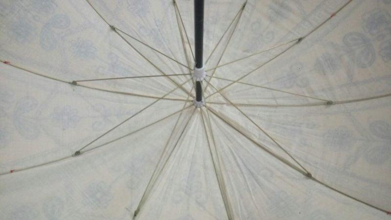 Indian Garden Parasol underside