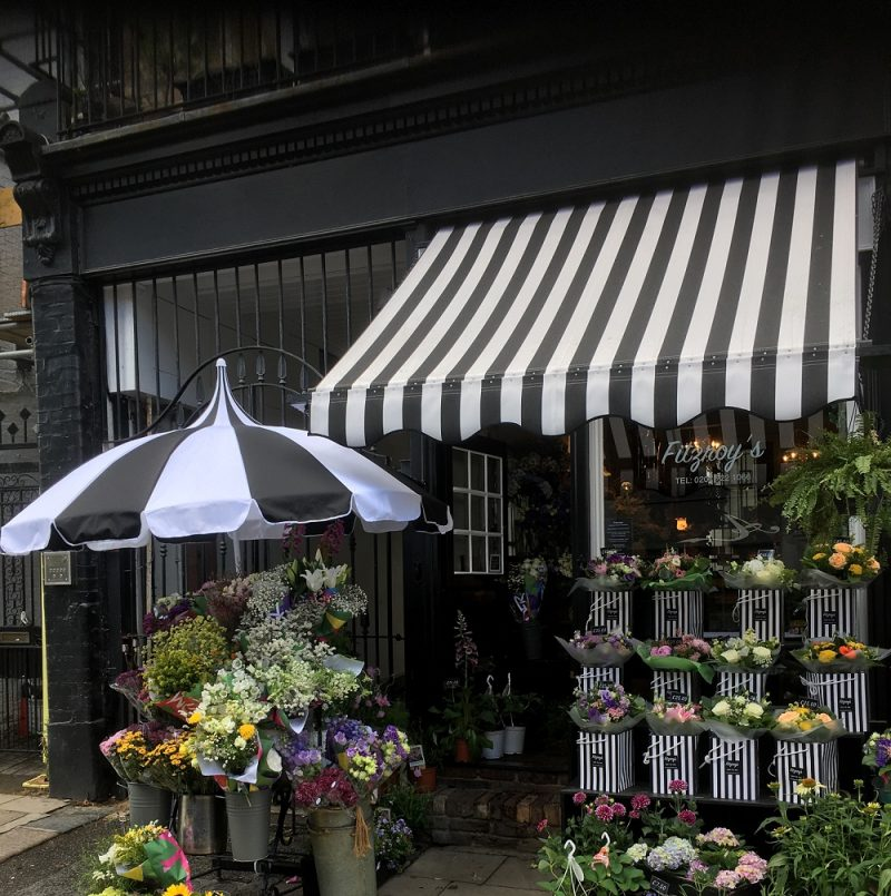 Black and White Pagoda Parasol at Fitzroys Flowers