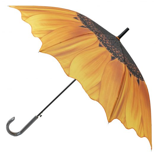 Sunflower Umbrella Main